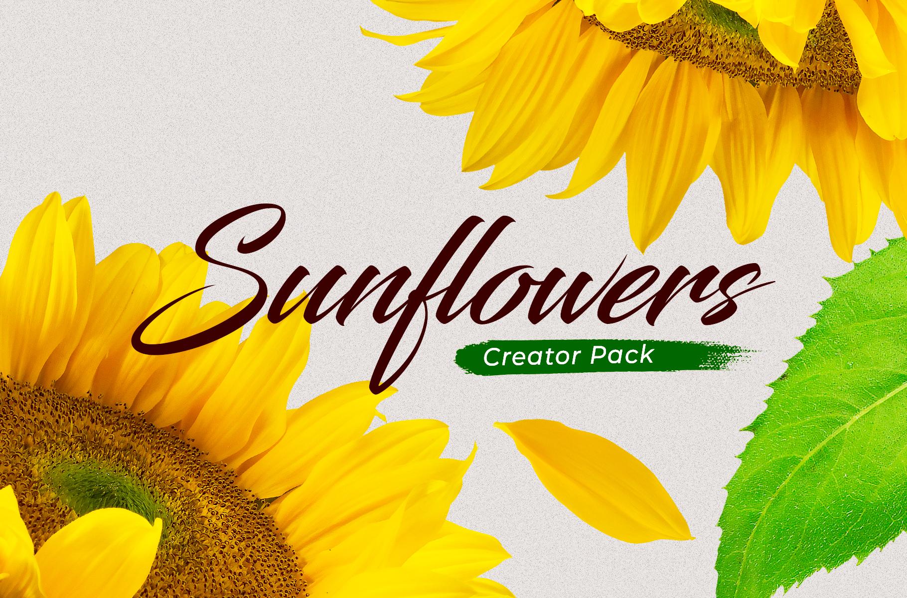https://s3u.tmimgcdn.com/1420880-1583601006750_Cover-Sunflowers.jpg