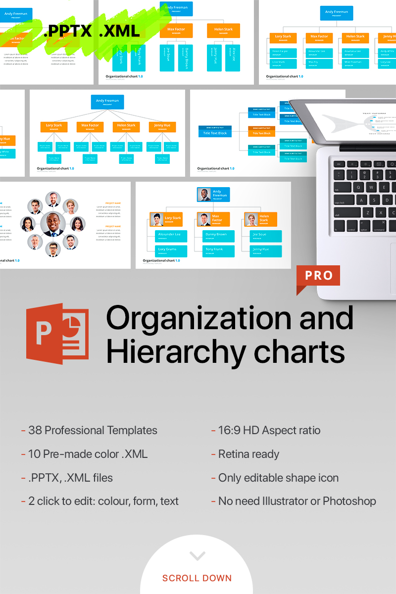 Organizational Chart & Hierarchy - PowerPoint Template #70618