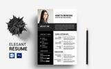 Arieta 1 Page Resume Template