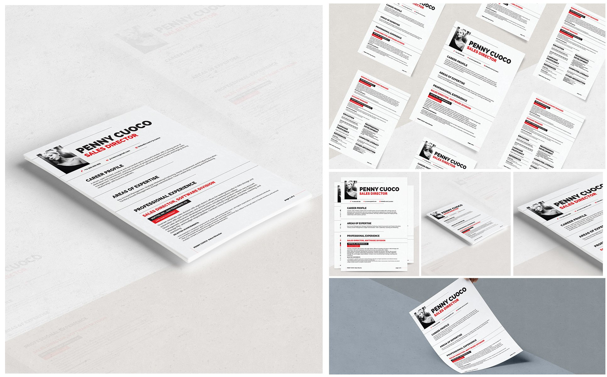 Auriage Resume Template