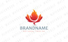 Maple Flame Logo Template Big Screenshot