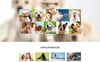"""Dog Club - Dog Breeder Compatible with Novi Builder"" Responsive Landingspagina Template Groot  Screenshot"