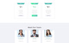 Net Expert - Business Consulting HTML5 Landing Page Template Big Screenshot