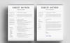 Robert Anthoni Clean Resume Template Big Screenshot
