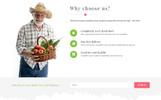 "Responzivní WooCommerce motiv ""Kokomi - Organic & Food"""