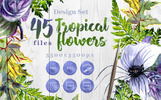 Tropical Flowers PNG Watercolor Set Illustration