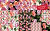 Wonderful Roses PNG Watercolor Flower Set Illustration Big Screenshot