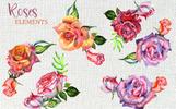 Wonderful Roses PNG Watercolor Flower Set Illustration