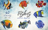 Sea Fishes PNG Watercolor Set Illustration