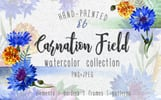 Carnation field PNG watercolor set Illustration