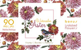 Ilustracja Charming Asters PNG Watercolor Set #69450