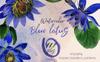 Blue Lotus PNG Watercolor Set Illustration Big Screenshot