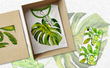 Tropics Leaves Monstera -  PNG Watercolor Açıklamalar