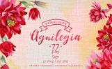 Aguilegia Cool Flower PNG Watercolor Set Illustration