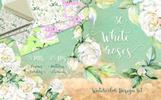 Delicate White Roses PNG Watercolor Set Açıklamalar
