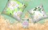 Delicate White Roses PNG Watercolor Set Açıklamalar Büyük Ekran Görüntüsü