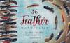 Delightful Feathers PNG Watercolor Set Illustration Big Screenshot
