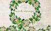Mock-orange Flowers PNG Watercolor Set Illustration Big Screenshot