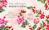 Rosa Arkansana PNG Watercolor Set Creative Illustration Nagy méretű képernyőkép