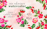 """Rosa Arkansana PNG Watercolor Set Creative"" - Ілюстрація"