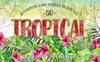 Tropical Leaves Collection PNG Watercolor Set Illustration Big Screenshot