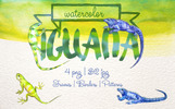Exotic Iguana In A Watercolor PNG Set Illustration