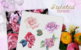 Roses Watercolor Png Illustration