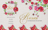 Rose Red Magic Watercolor Png Illustration