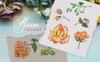 Roses Watercolor Yellow png Illustration En stor skärmdump