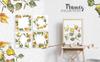 Leaves Birch Watercolor Png Illustration Big Screenshot