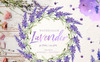 Lavender Watercolor png Illustration Big Screenshot