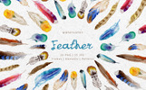 Feather Watercolor png Illustration
