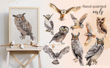Owl Watercolor png Illustration
