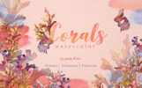 Corals Watercolor png Illustration