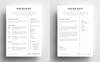 Martien White - Professional Resume Template Big Screenshot