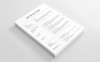Jean Waves Daily_Clean CV Resume Template Big Screenshot