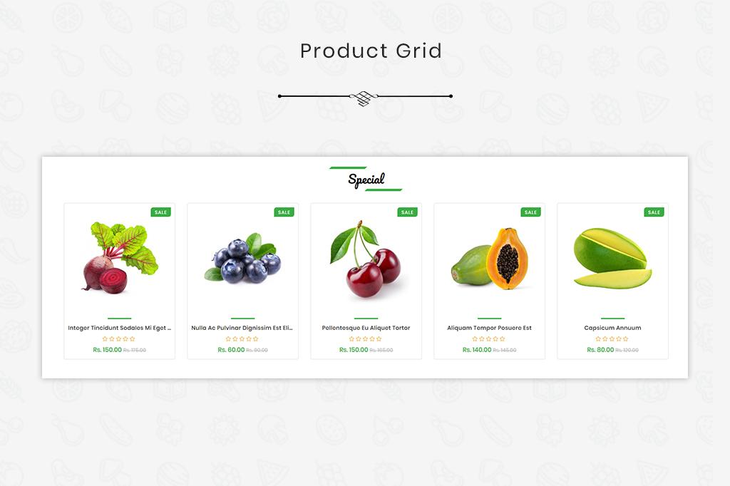 https://s3u.tmimgcdn.com/1731972-1568193508583_Product-Grid.jpg