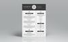 2 Pages Glalink Resume Template Big Screenshot