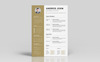 Andros John Word Resume Template Big Screenshot