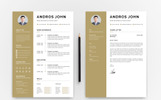 Andros John Word Resume Template