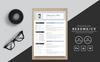 Selmiailt Alex Modern Resume Template Big Screenshot
