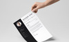 """Micksied John"" Premium CV Template Groot  Screenshot"