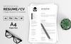 Joe Baston Resume Template Big Screenshot