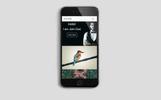 Photographer - Portfolio Bootstrap v4.1 Landing Page Template