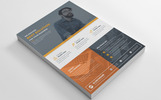 Software Company Corporate Flyers Corporate Identity Template