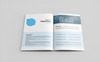 Company Proposal Corporate Identity Template Big Screenshot