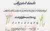 Nichodelia Font Pack Font Big Screenshot