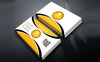 Giniusx - Personal Bussines Card Corporate Identity Template Big Screenshot