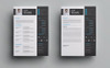 Alom Williams Resume Template En stor skärmdump