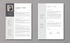 Szablon resume Five Style Two Page Bundle #79901 Duży zrzut ekranu
